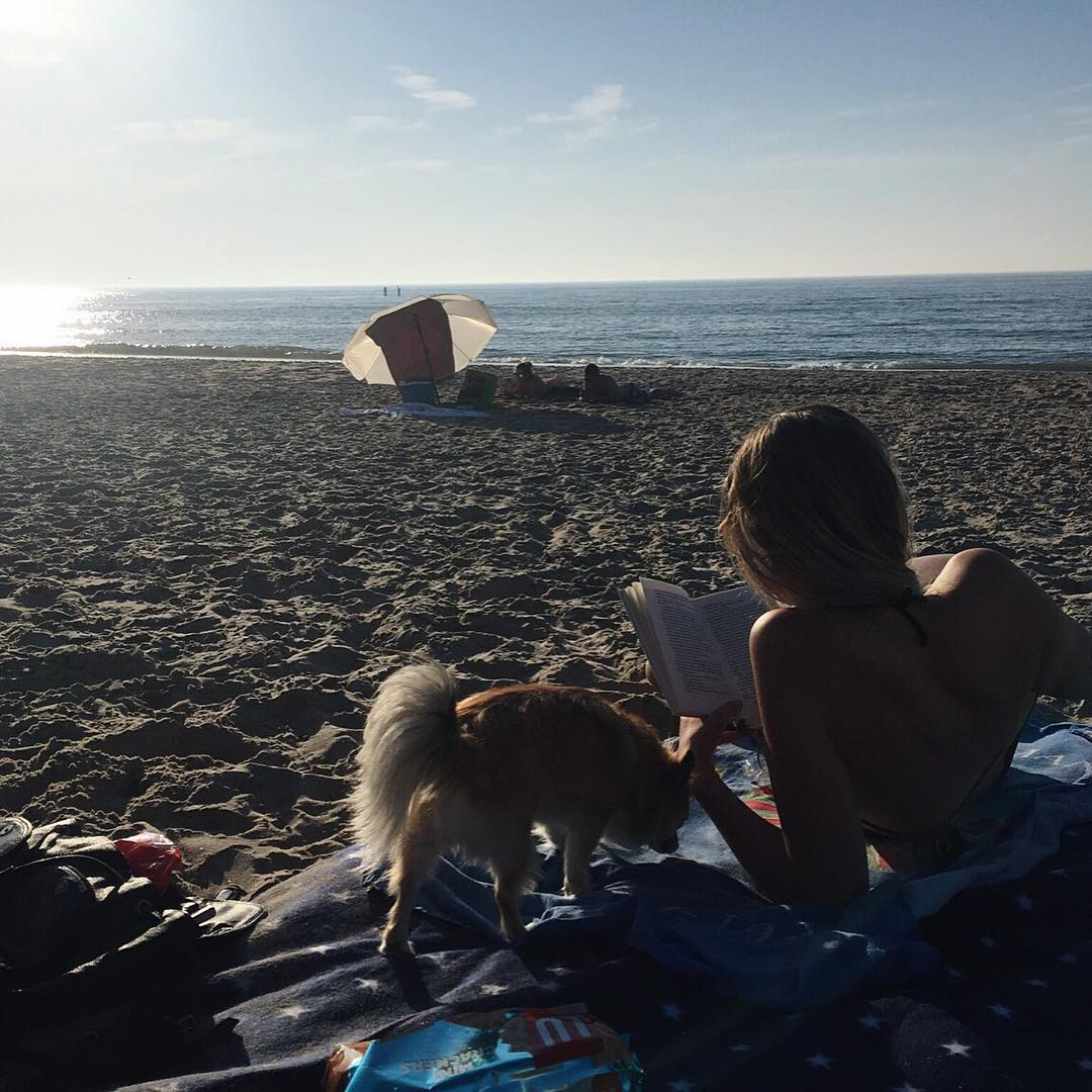 last days of summer, beach, ocean, strand, bikini, dog, chihuahua, sonnenuntergang, sommer,